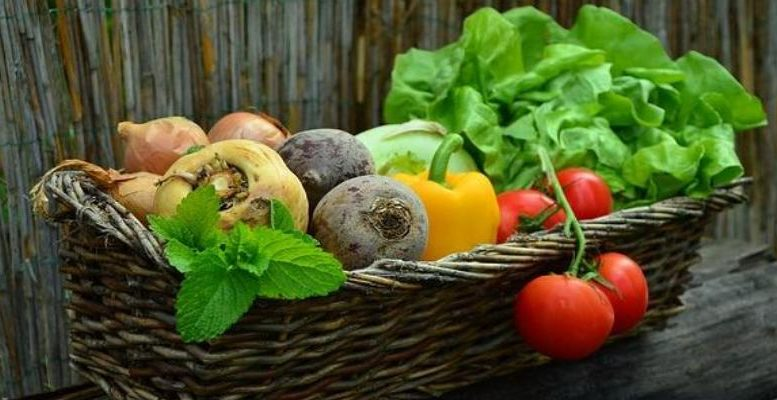 organic farming - back to basics