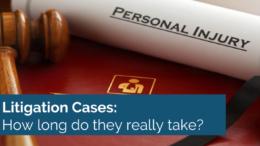litigation cases