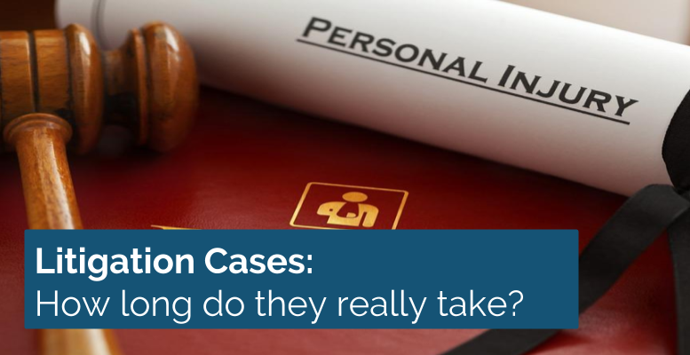 litigation cases